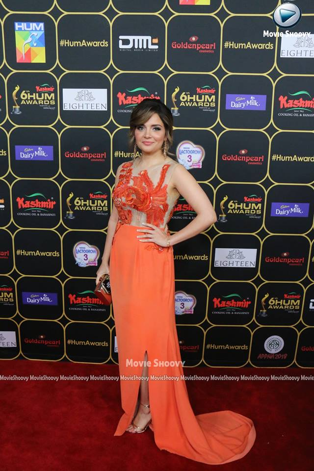 Complete Red Carpet Pictures And Details Of Hum Awards